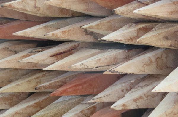 50 x 50 x 900mm Hardwood Peg